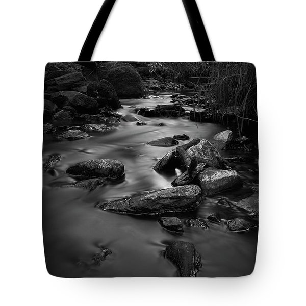 The Beck Tote Bag