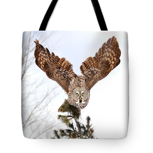 The Becoming Of The Queen Tote Bag