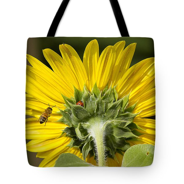 The Bee Lady Bug And Sunflower Tote Bag