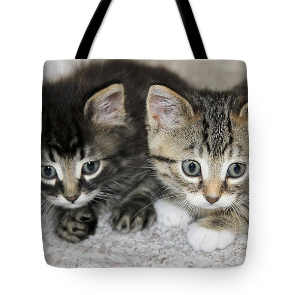 The Best Buddies Tote Bag by Teresa Zieba