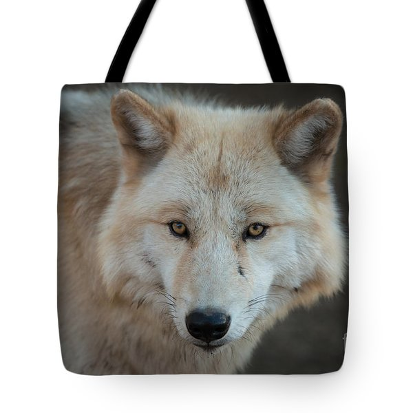 The Big Beautiful Wolf Tote Bag