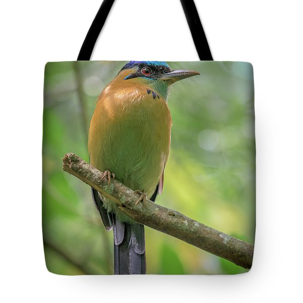 The Blue Crown Tote Bag