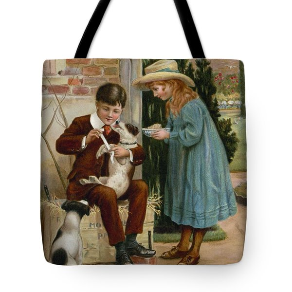 The Boy Doctor Tote Bag