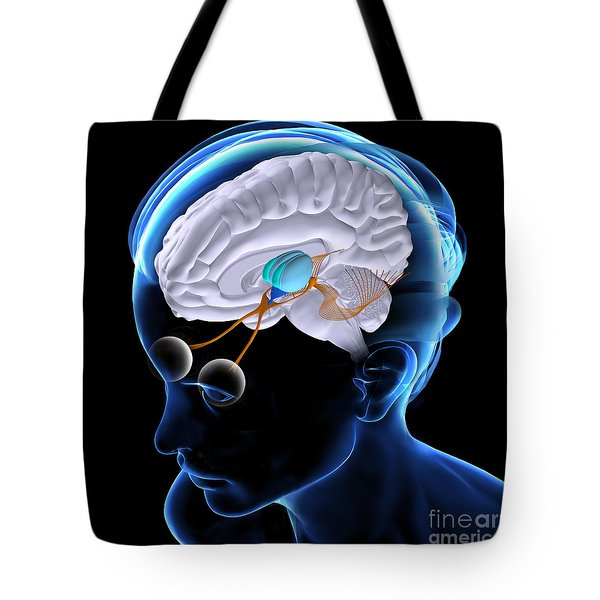 The Brain And Sight Tote Bag