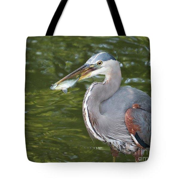 The Breadwinner Tote Bag