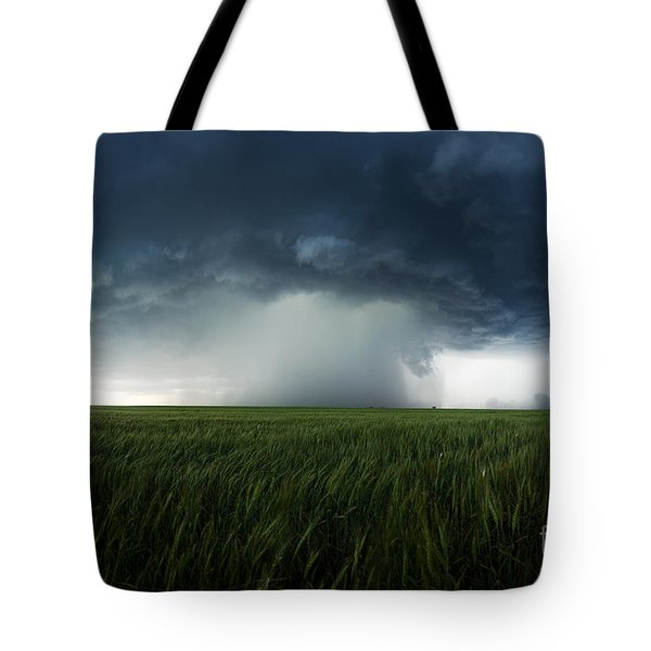 The Breath Before The Plunge Tote Bag