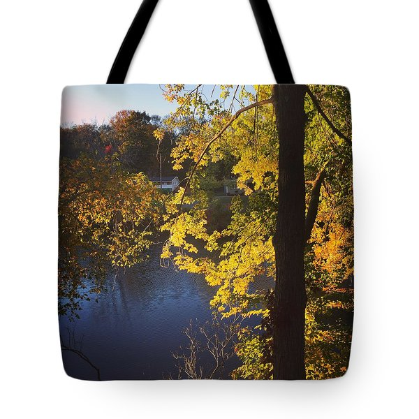 The Brilliance Of Nature Leaves Me Speechless Tote Bag