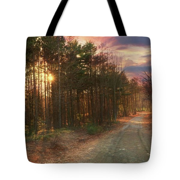 Tote Bag featuring the photograph The Brown Path Before Me by Lori Deiter
