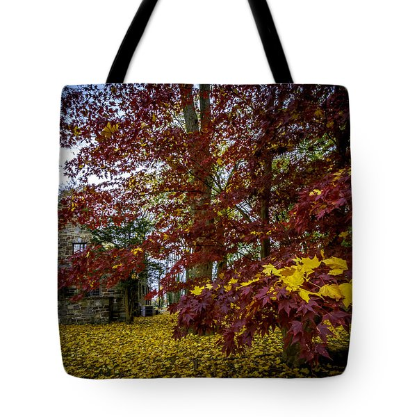 The Cabin In Autumn Tote Bag