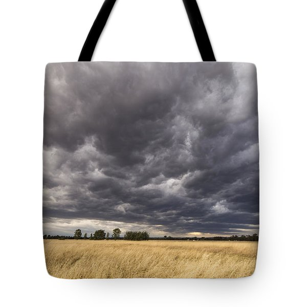 The Calm Before The Storm Tote Bag by Linda Lees