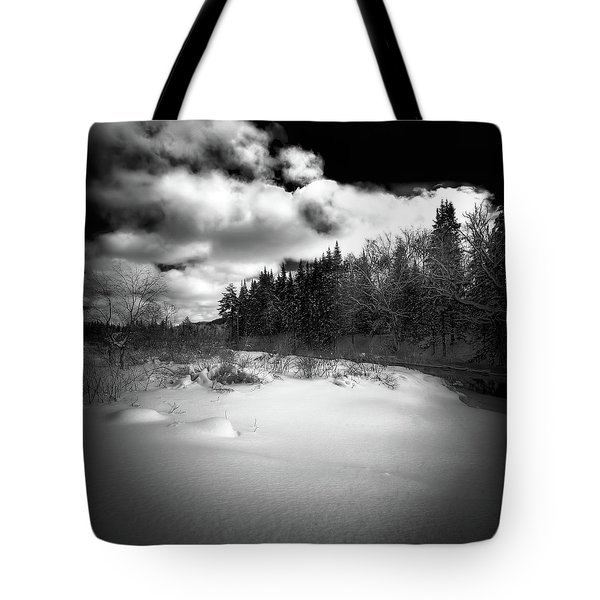 Tote Bag featuring the photograph The Calm Of Winter by David Patterson