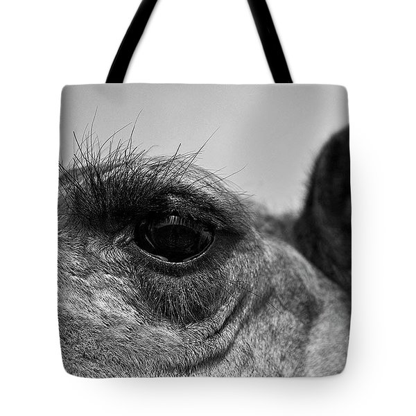 The Camels Eye  Tote Bag