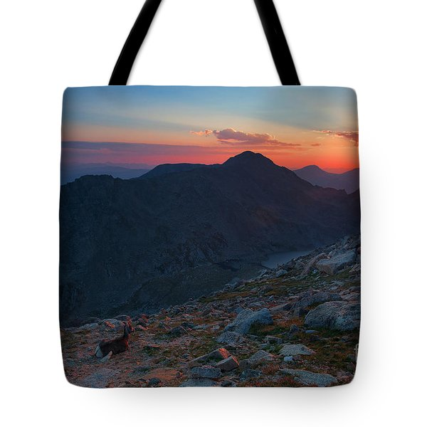 The Campground Tote Bag