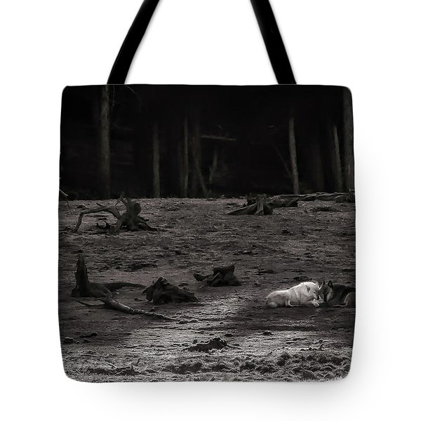 The Canyon Alphas B/w Tote Bag