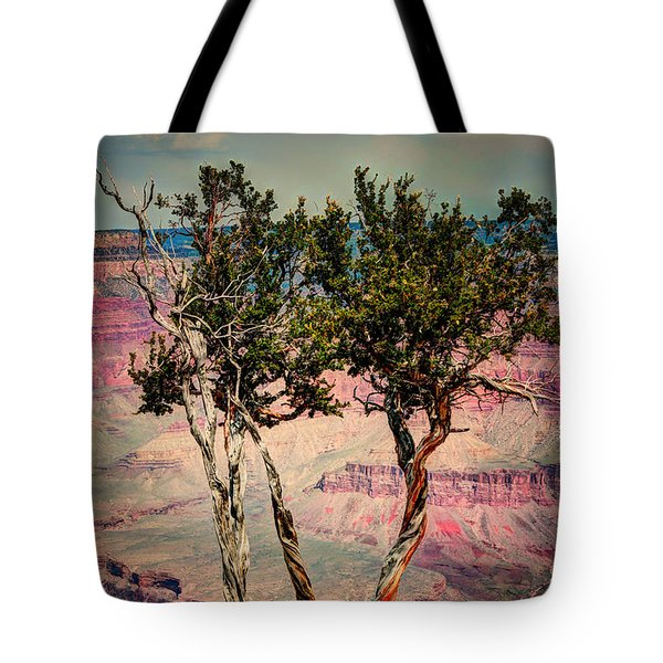 Tote Bag featuring the photograph The Canyon Tree by Tom Prendergast