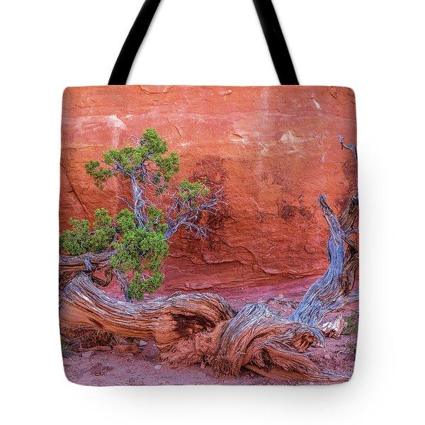 The Canyon Wall Juniper Tote Bag