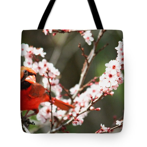 Tote Bag featuring the photograph The Cardinal by Trina  Ansel