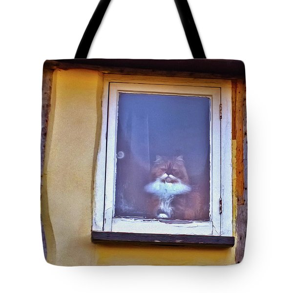 The Cat In The Window Tote Bag by Anne Kotan
