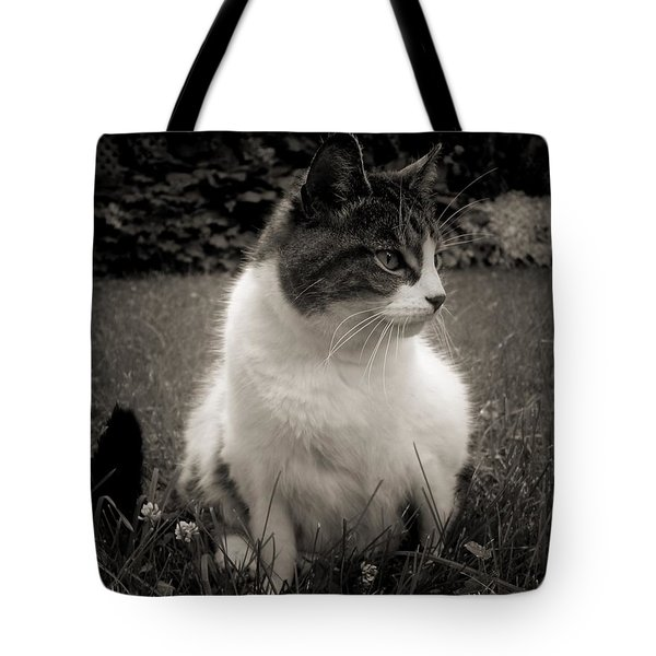 The Cat Came Back Tote Bag by Maciek Froncisz