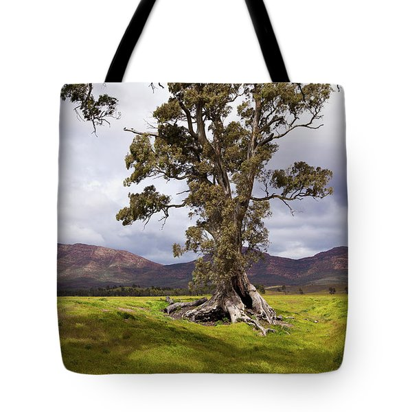 The Cazneaux Tree Tote Bag by Bill Robinson