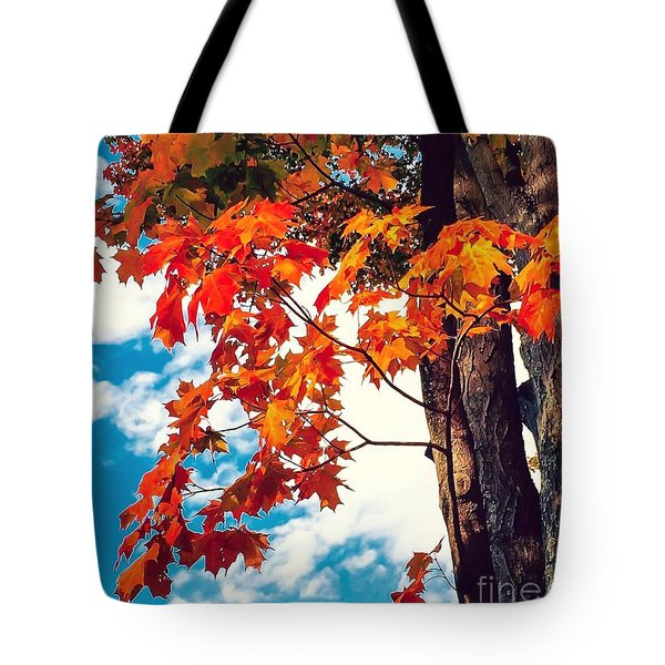 The  Changing  Tote Bag