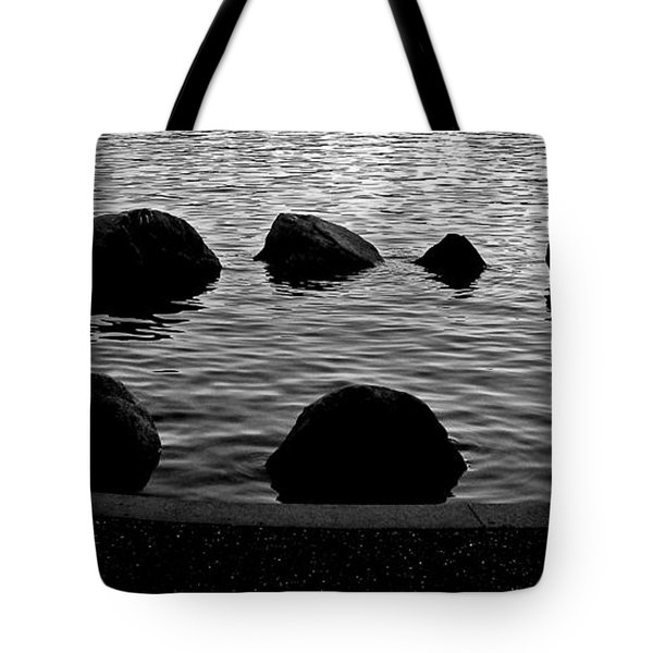 The Circle Tote Bag by Brian Chase