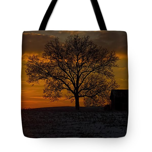 The Circle Of Life Tote Bag by Skip Tribby