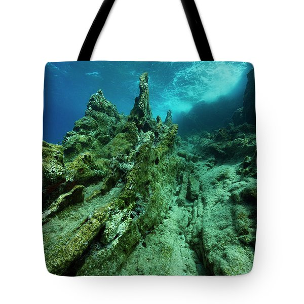 Tote Bag featuring the photograph The Cliff by Rico Besserdich