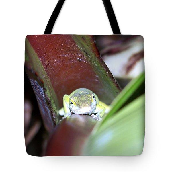 The Climb Tote Bag by Karen Wiles