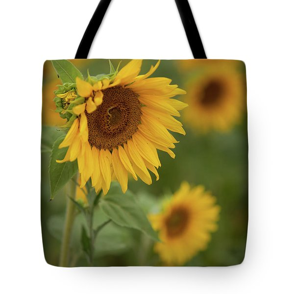 The Close Up Of Sunflowers Tote Bag