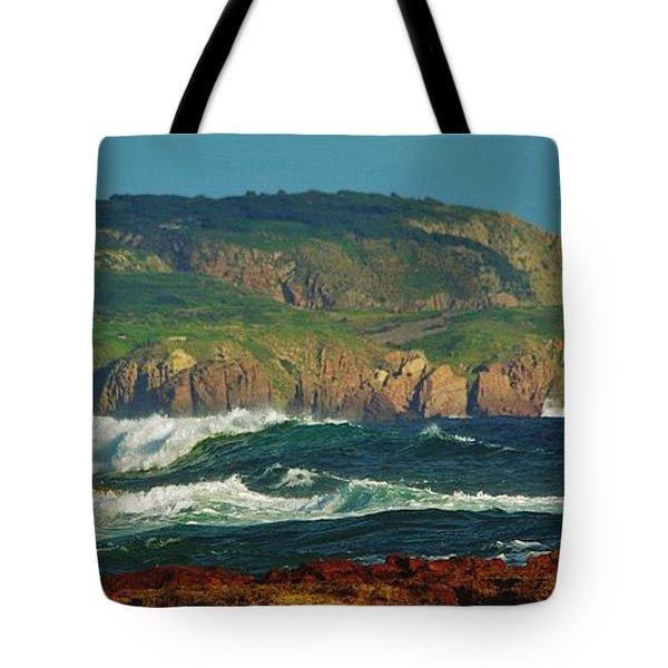 The Collonades Tote Bag by Blair Stuart