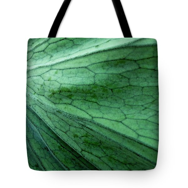The Color Green Tote Bag by Gwyn Newcombe