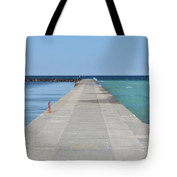 Tote Bag featuring the photograph The Colors Of Lake Michigan by Fran Riley