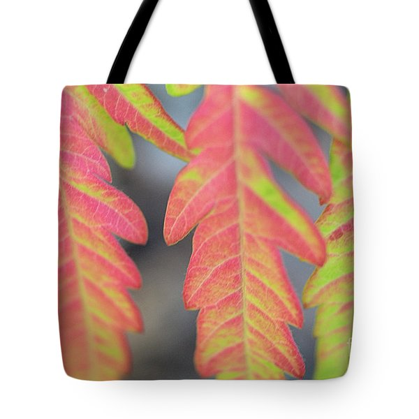 The Colors Of Shumac 8 Tote Bag