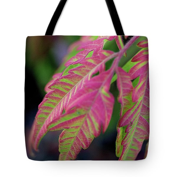 The Colors Of Shumac 9 Tote Bag
