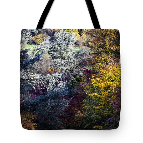 The Colours Of Autumn Tote Bag
