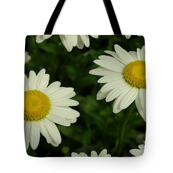The Common Daisy Tote Bag by James C Thomas