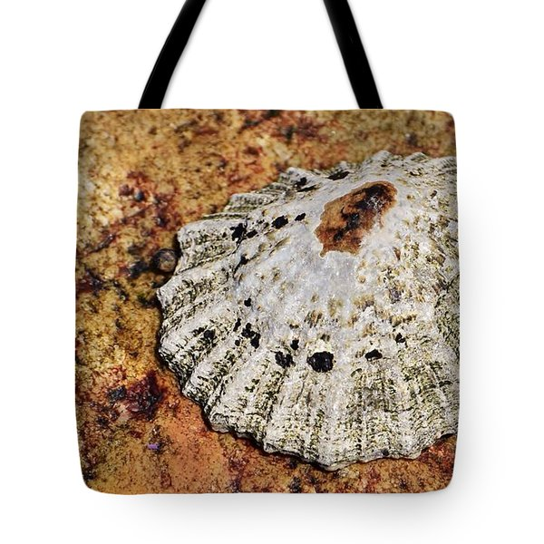 The Common Limpet Tote Bag
