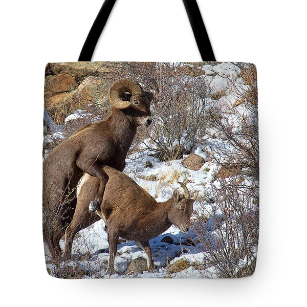 The Coupling Tote Bag