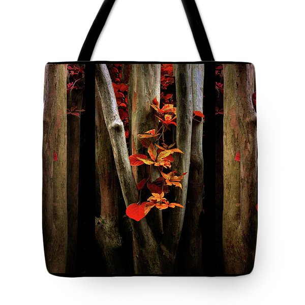 Tote Bag featuring the photograph The Crimson Forest by Jessica Jenney