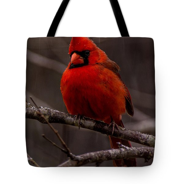 The Crimson Suit Tote Bag