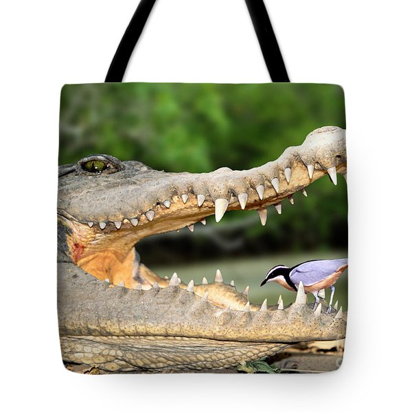 The Crocodile Bird Tote Bag