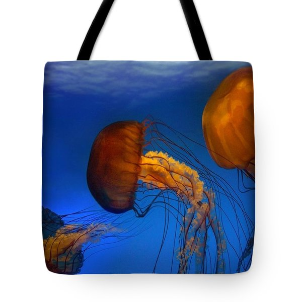 The Dance Tote Bag by Bill Stephens