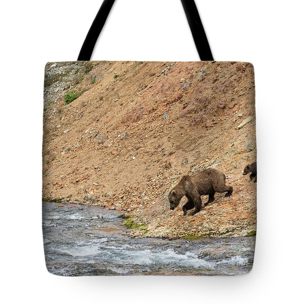 Tote Bag featuring the photograph The Danger Has Passed by Cheryl Strahl