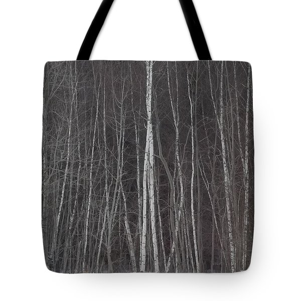 The Dark Beyond The Trees Tote Bag