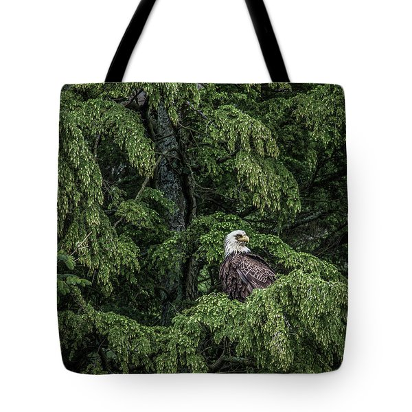 The Dark Eyed One Tote Bag by Timothy Latta