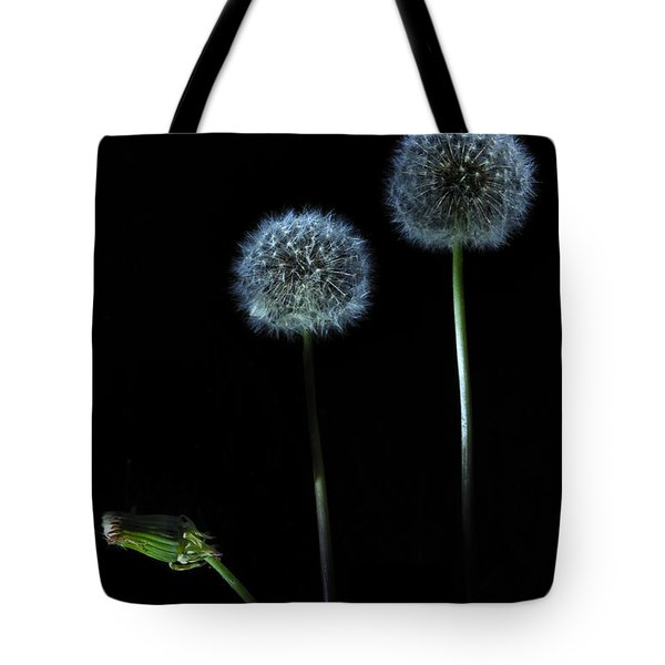 The Darkness Can't Hide You Tote Bag