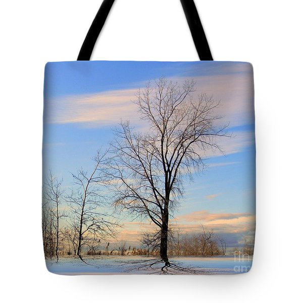 The Delight Tote Bag by Elfriede Fulda
