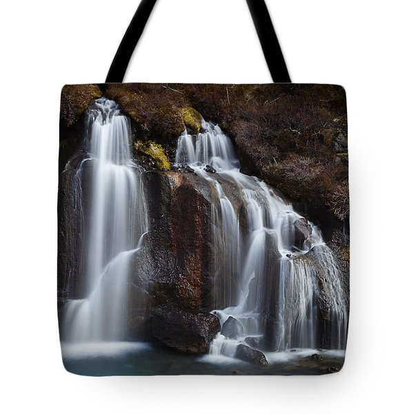 The Descent Tote Bag by Dominique Dubied