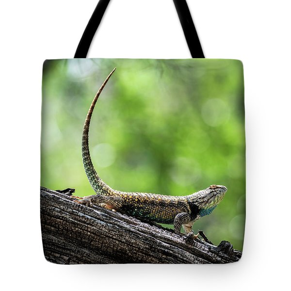 Tote Bag featuring the photograph The Desert Spiny Stance  by Saija Lehtonen
